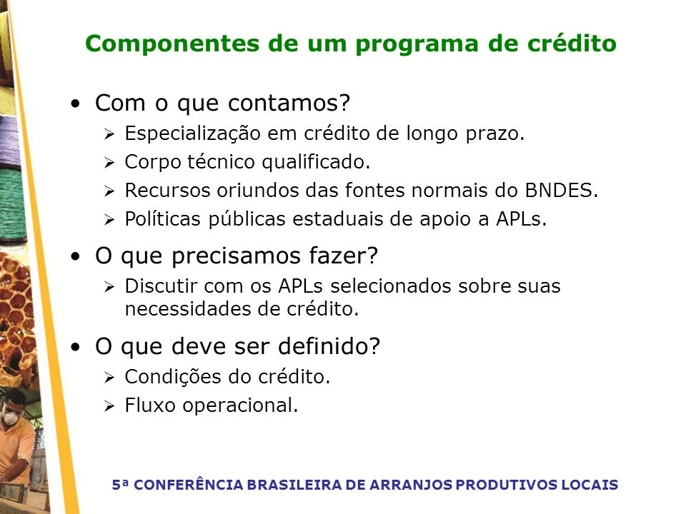 Componentes de um programa de crédito