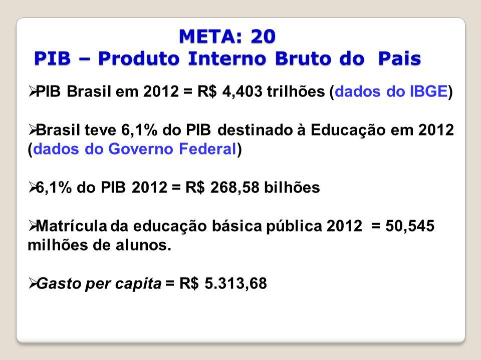 META: 20 PIB – Produto Interno Bruto do Pais