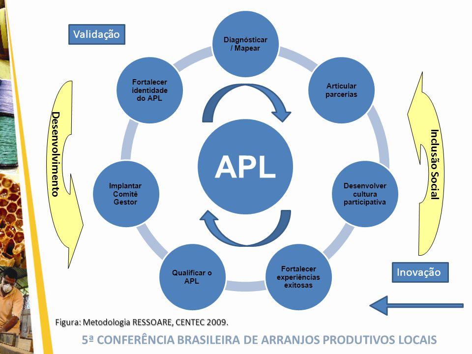 Validação Desenvolvimento Inclusão Social Inovação