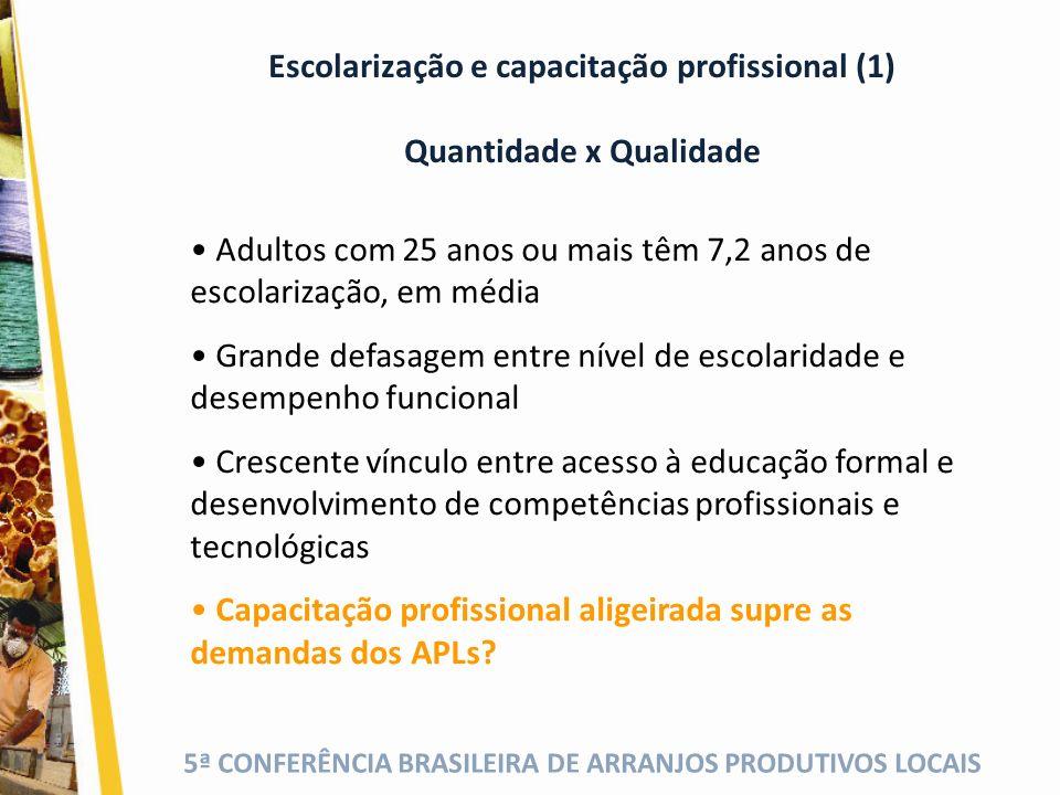 Escolarização e capacitação profissional (1) Quantidade x Qualidade