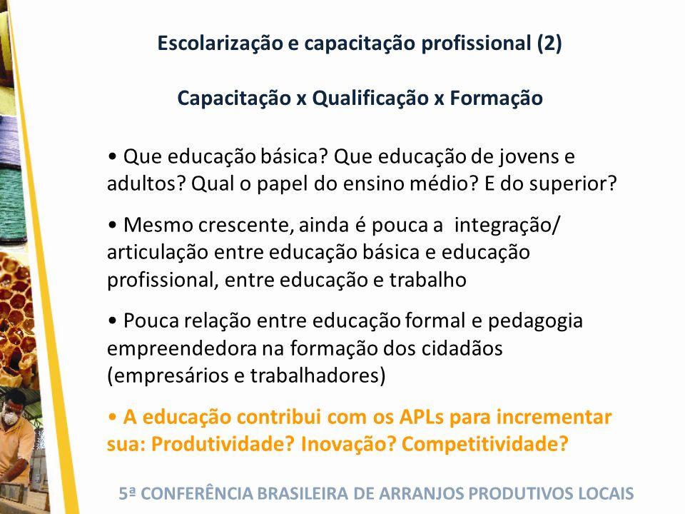 Escolarização e capacitação profissional (2)