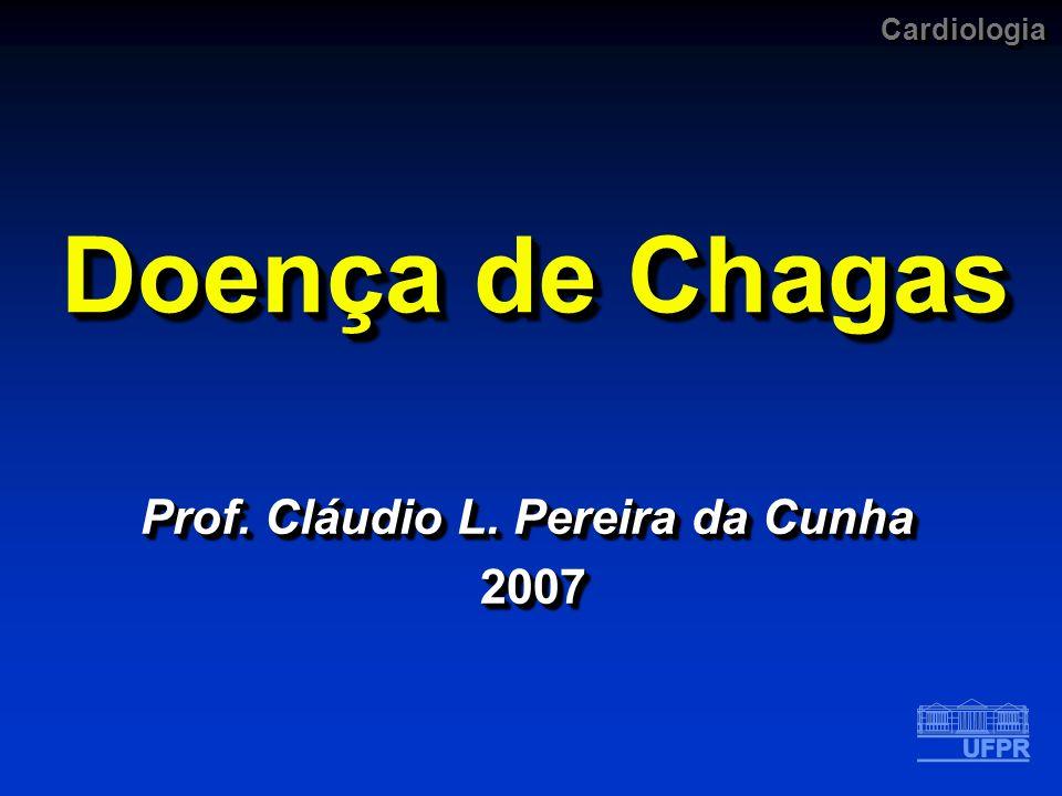 Prof. Cláudio L. Pereira da Cunha 2007