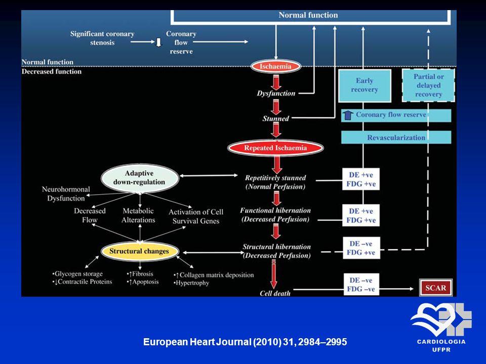 European Heart Journal (2010) 31, 2984–2995