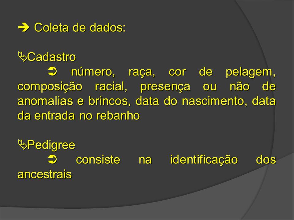  Coleta de dados: Cadastro.