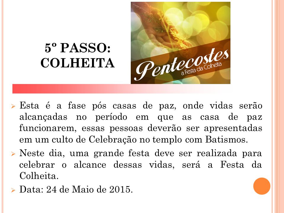 5º PASSO: COLHEITA