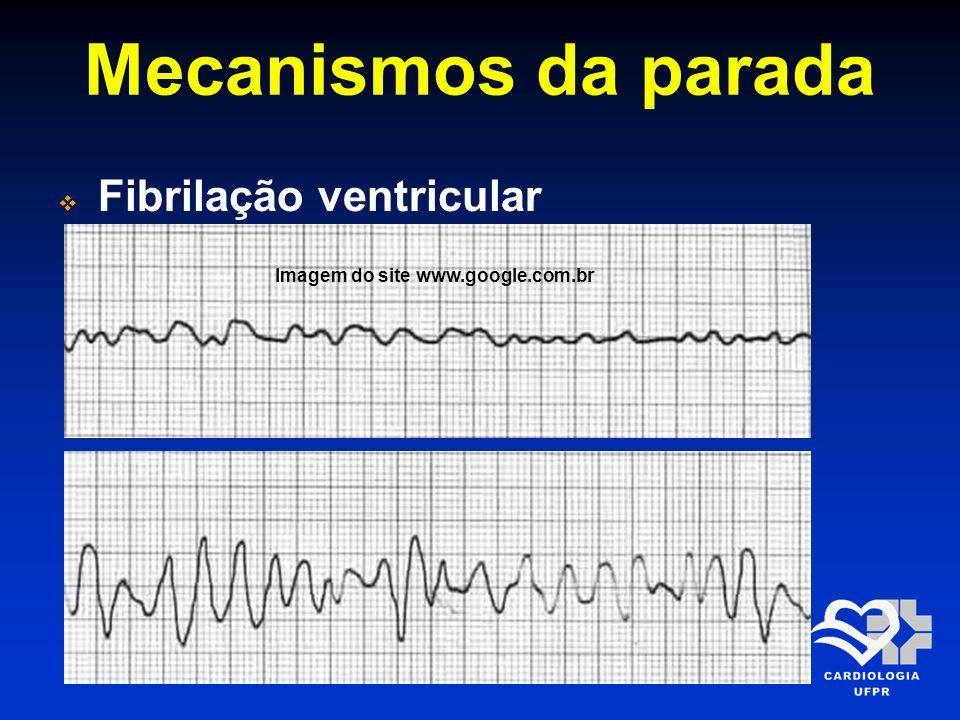 Imagem do site www.google.com.br