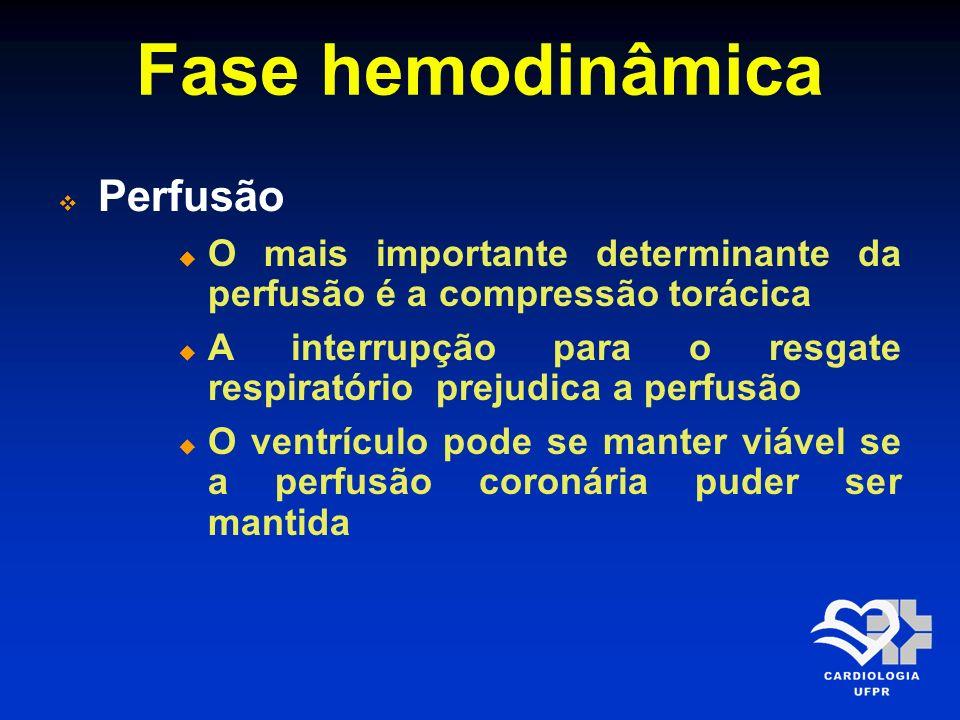 Fase hemodinâmica Perfusão