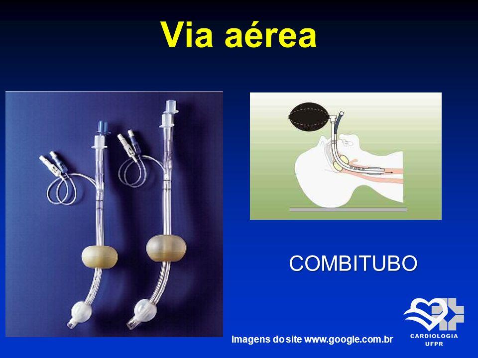 Imagens do site www.google.com.br