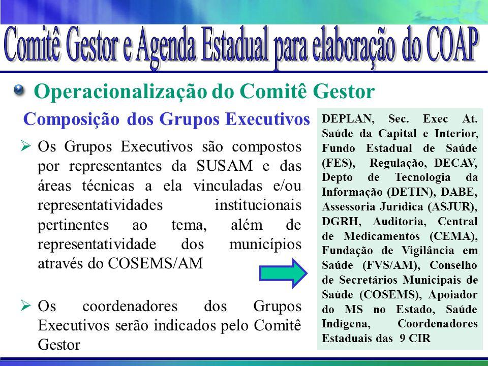 Composição dos Grupos Executivos