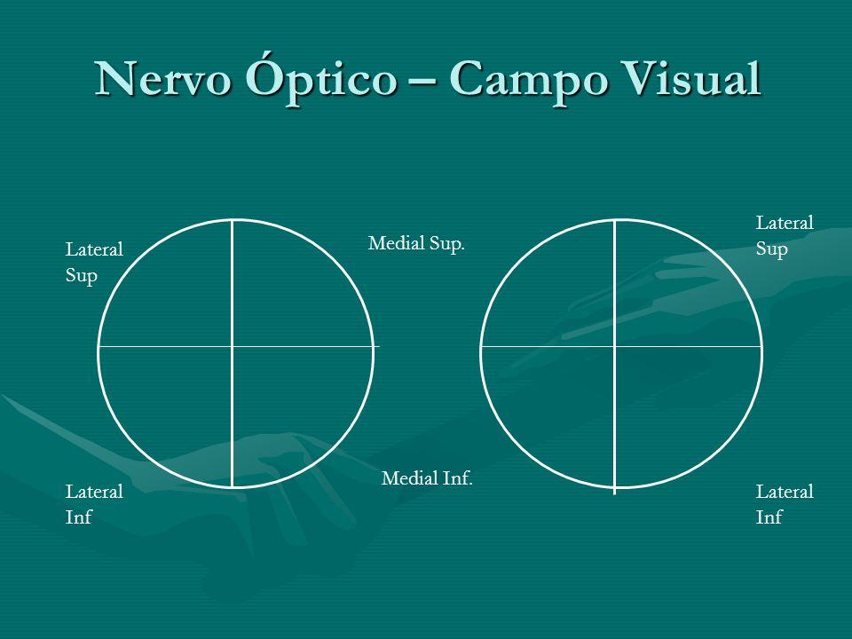 Nervo Óptico – Campo Visual