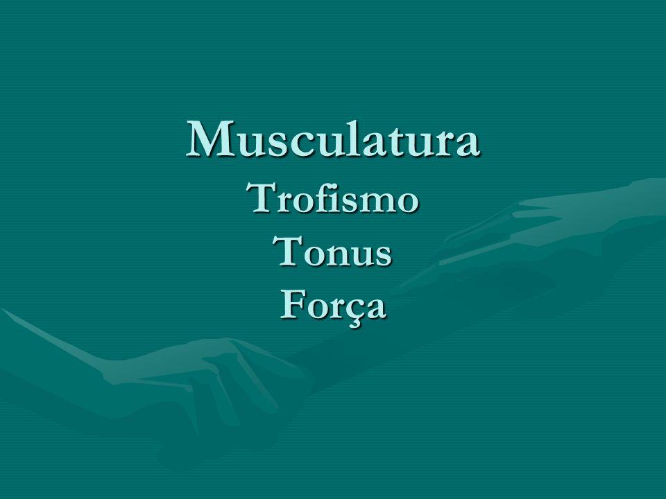 Musculatura Trofismo Tonus Força