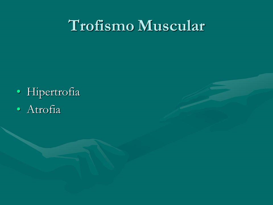 Trofismo Muscular Hipertrofia Atrofia
