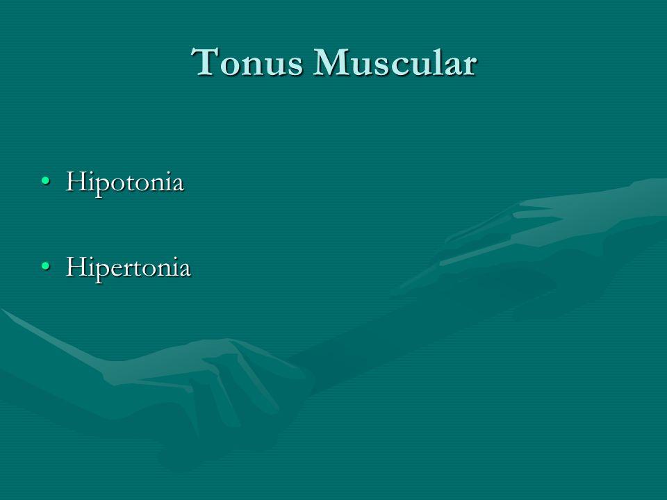 Tonus Muscular Hipotonia Hipertonia