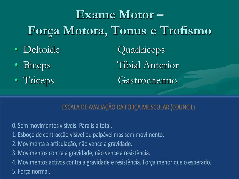 Exame Motor – Força Motora, Tonus e Trofismo