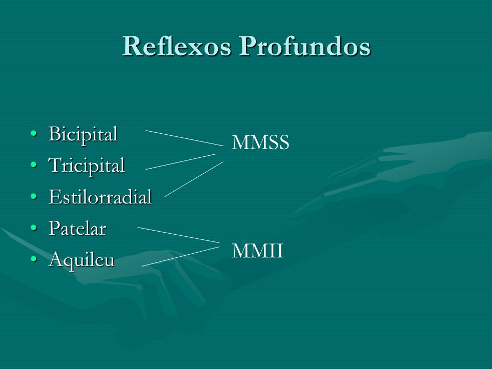 Reflexos Profundos Bicipital Tricipital MMSS Estilorradial Patelar
