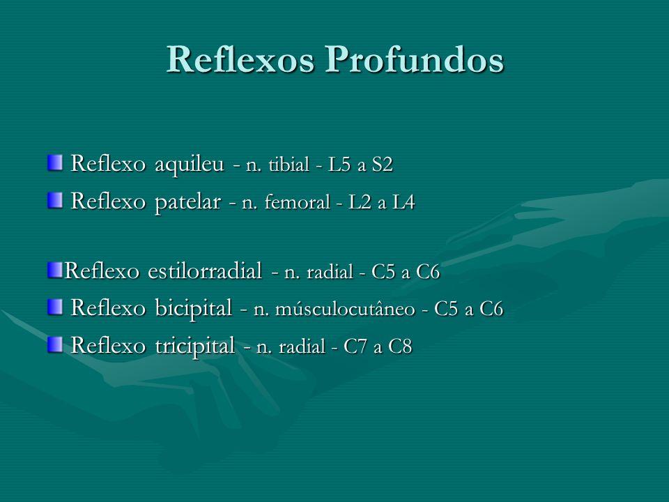 Reflexos Profundos Reflexo aquileu - n. tibial - L5 a S2