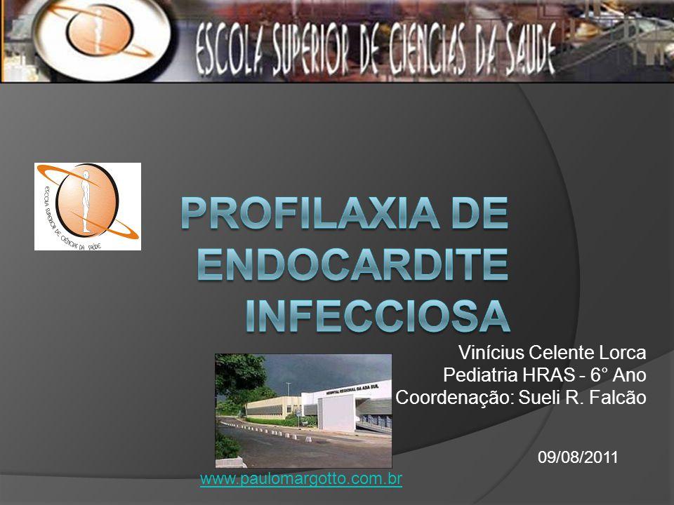 Vinícius Celente Lorca Pediatria HRAS - 6° Ano