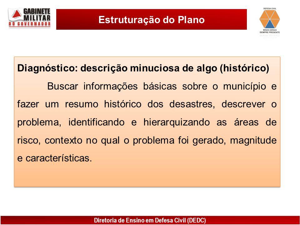 Estruturação do Plano Diagnóstico: descrição minuciosa de algo (histórico)