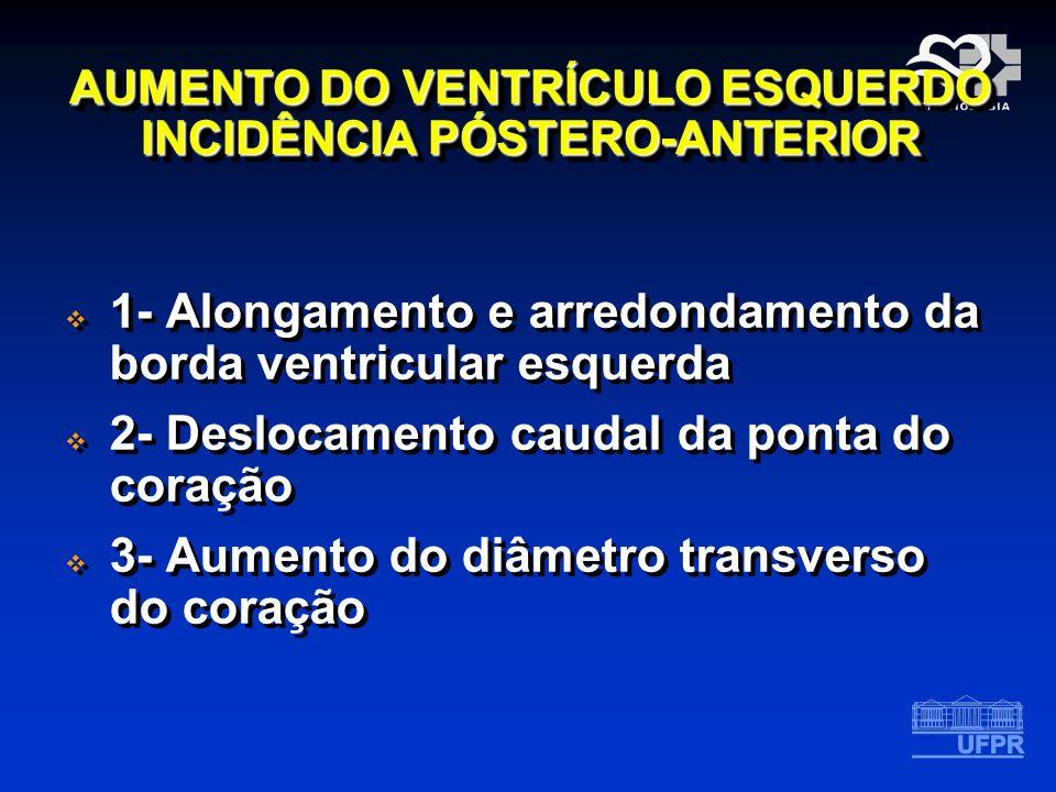 AUMENTO DO VENTRÍCULO ESQUERDO INCIDÊNCIA PÓSTERO-ANTERIOR