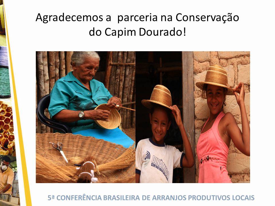 Agradecemos a parceria na Conservação do Capim Dourado!