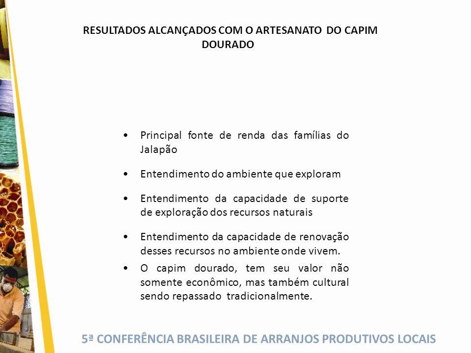 RESULTADOS ALCANÇADOS COM O ARTESANATO DO CAPIM DOURADO