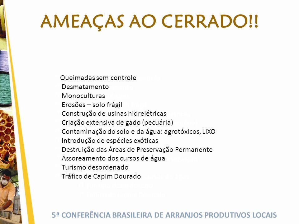 AMEAÇAS AO CERRADO!! Queimadas sem controle Desmatamento