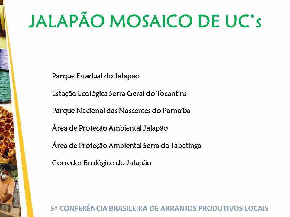 JALAPÃO MOSAICO DE UC's