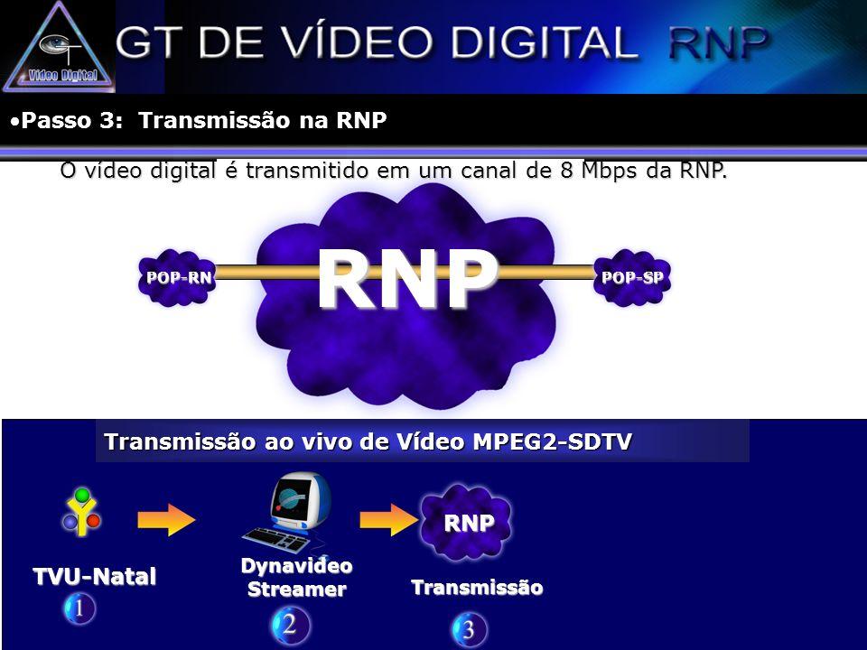 Passo 3: Transmissão na RNP