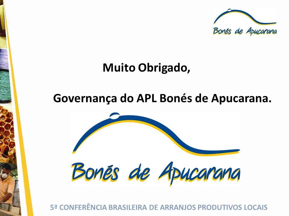 Governança do APL Bonés de Apucarana.