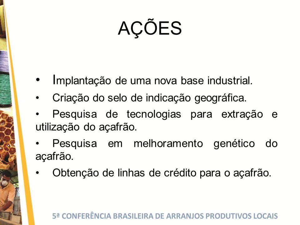 AÇÕES • Implantação de uma nova base industrial.