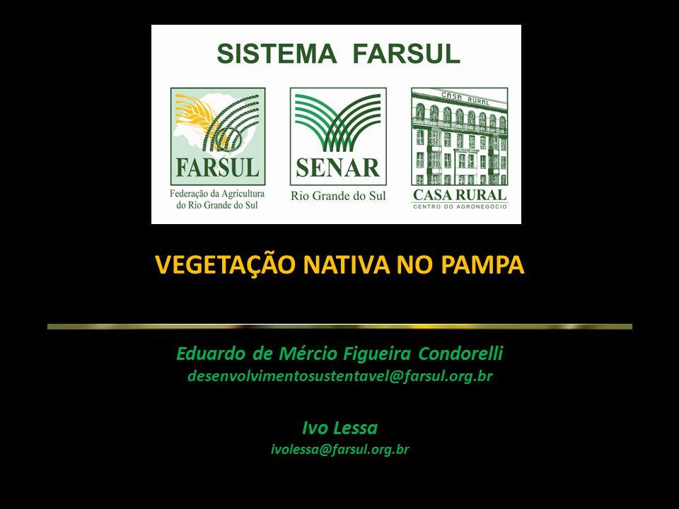 VEGETAÇÃO NATIVA NO PAMPA Eduardo de Mércio Figueira Condorelli