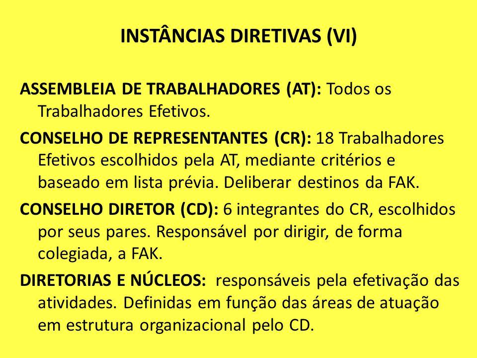 INSTÂNCIAS DIRETIVAS (VI)