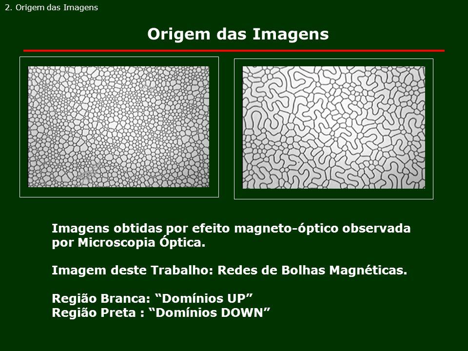 2. Origem das Imagens Origem das Imagens. Imagens obtidas por efeito magneto-óptico observada por Microscopia Óptica.