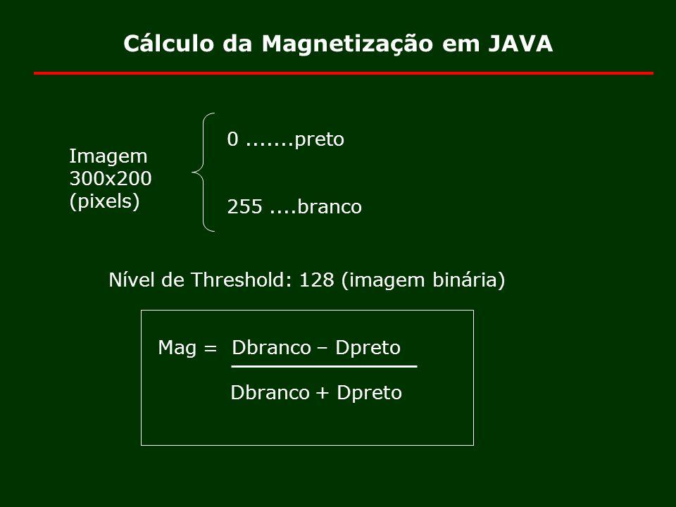 Cálculo da Magnetização em JAVA