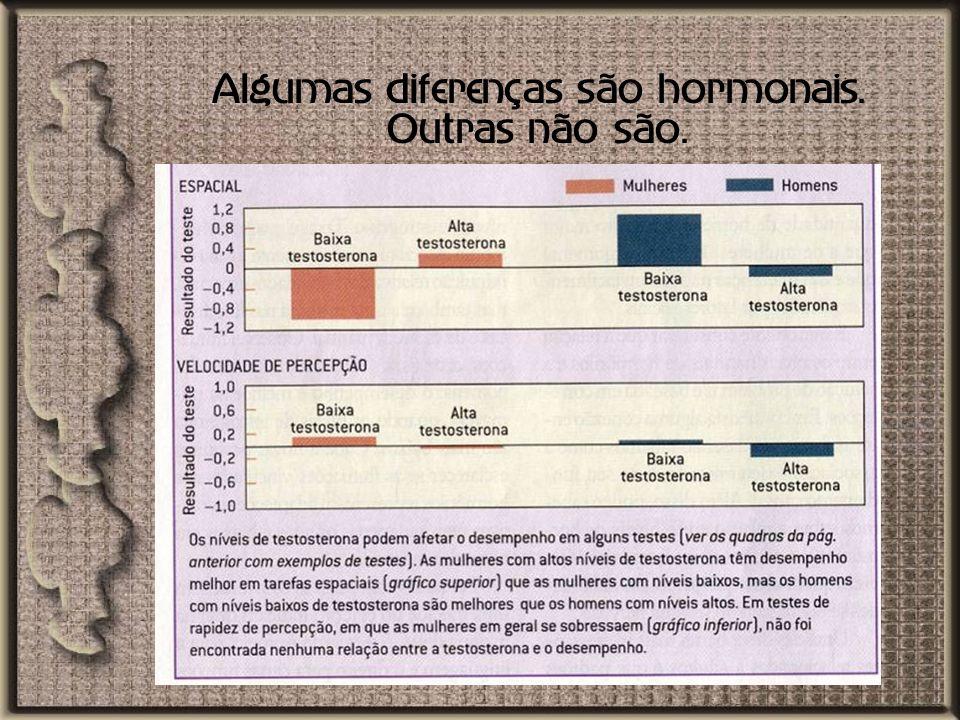 Algumas diferenças são hormonais. Outras não são.