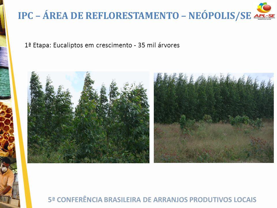 IPC – ÁREA DE REFLORESTAMENTO – NEÓPOLIS/SE