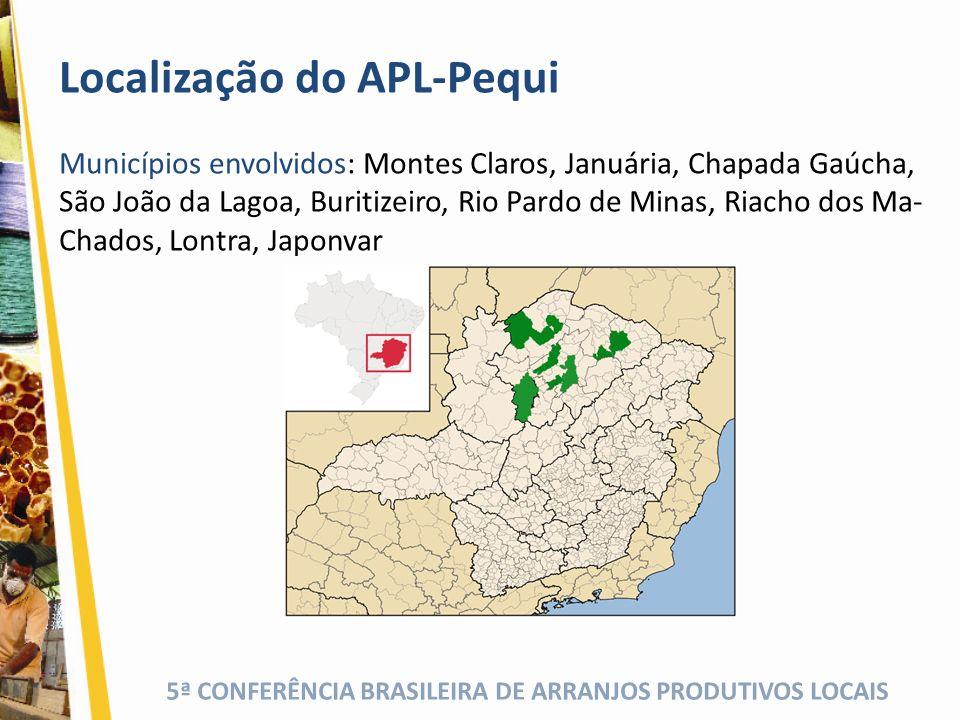 Localização do APL-Pequi