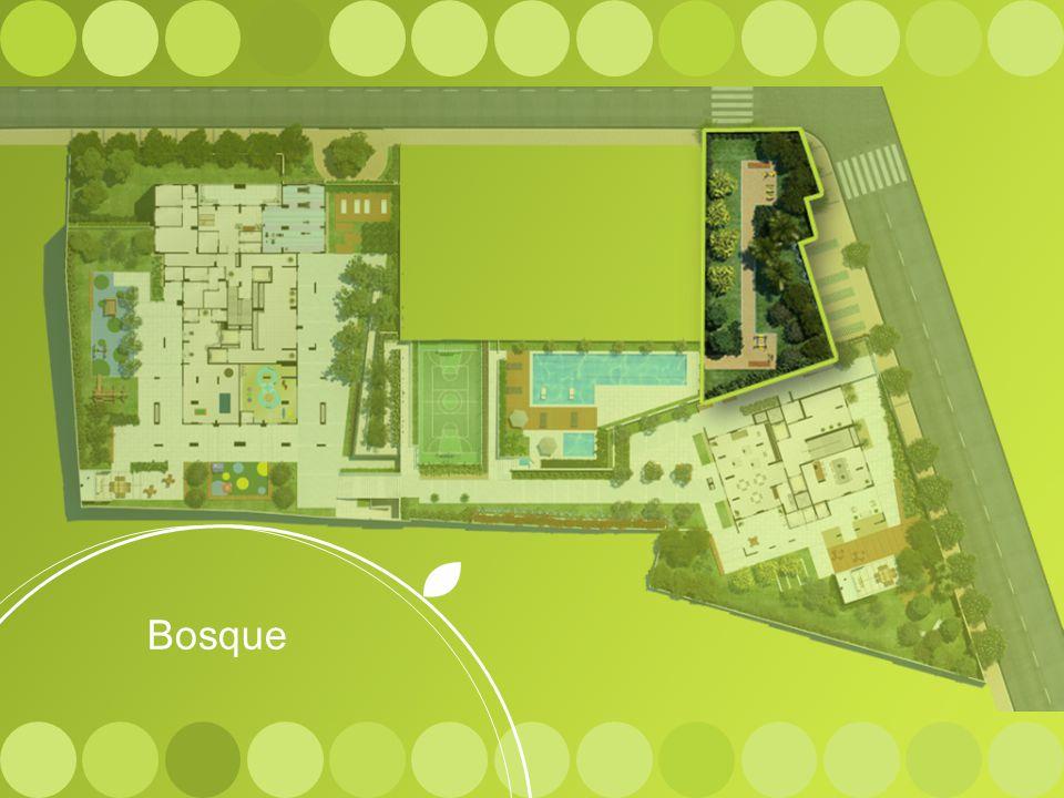 Bosque Bosque