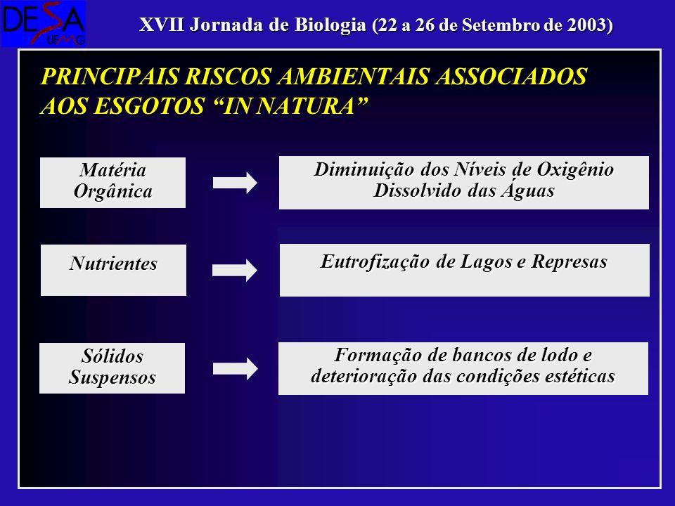 PRINCIPAIS RISCOS AMBIENTAIS ASSOCIADOS AOS ESGOTOS IN NATURA