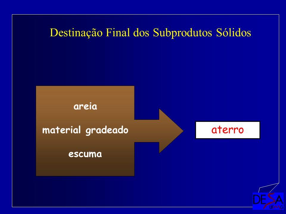Destinação Final dos Subprodutos Sólidos