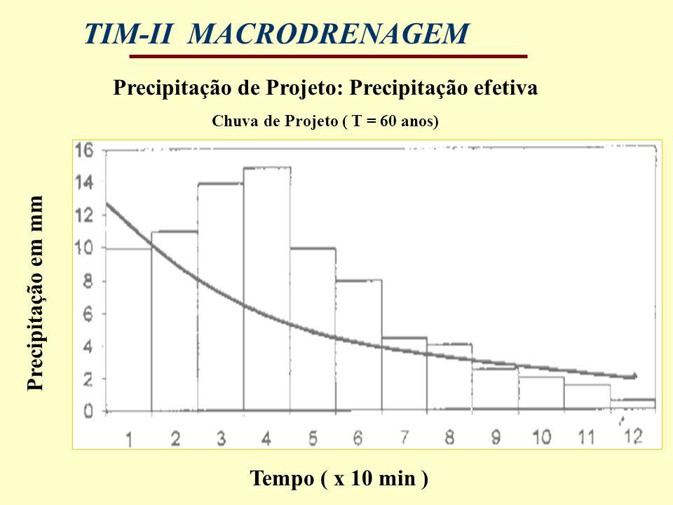 Precipitação de Projeto: Precipitação efetiva Tempo ( x 10 min )