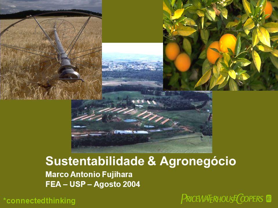 Sustentabilidade & Agronegócio Marco Antonio Fujihara FEA – USP – Agosto 2004