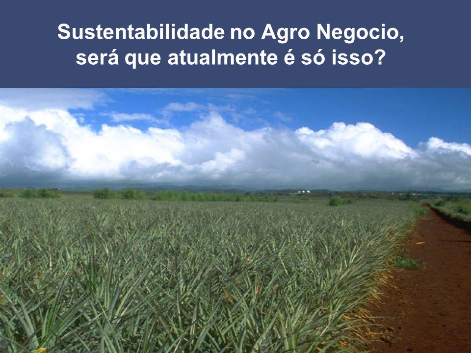 Sustentabilidade no Agro Negocio, será que atualmente é só isso