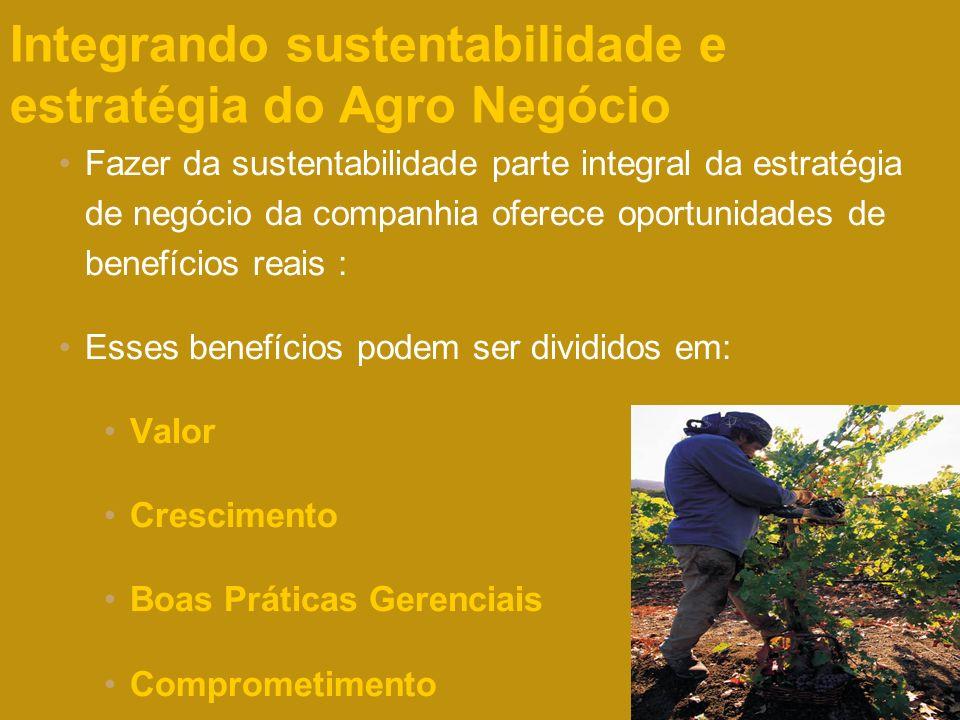 Integrando sustentabilidade e estratégia do Agro Negócio