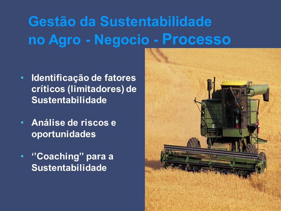 Gestão da Sustentabilidade no Agro - Negocio - Processo