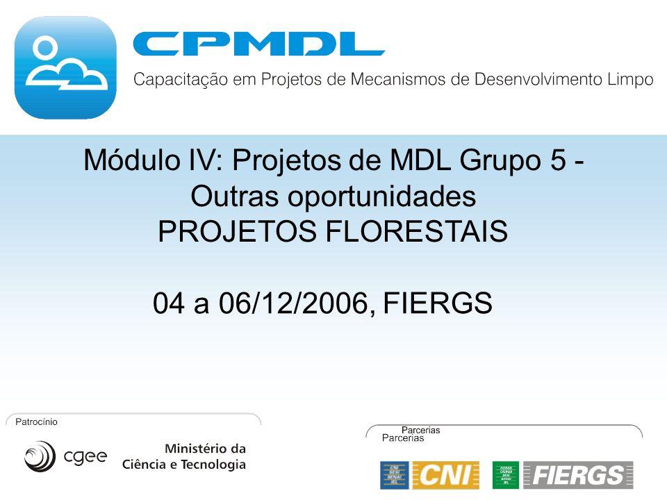 Módulo IV: Projetos de MDL Grupo 5 - Outras oportunidades PROJETOS FLORESTAIS