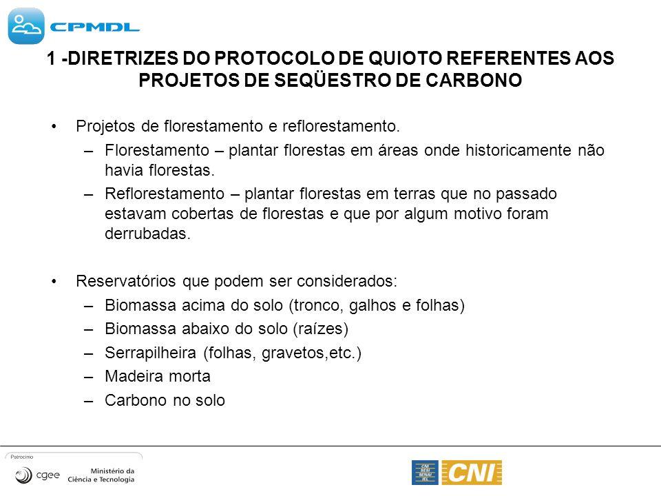 1 -DIRETRIZES DO PROTOCOLO DE QUIOTO REFERENTES AOS PROJETOS DE SEQÜESTRO DE CARBONO
