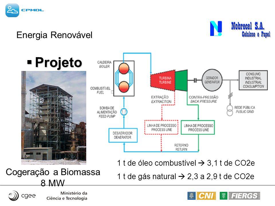 Projeto Energia Renovável Cogeração a Biomassa 8 MW