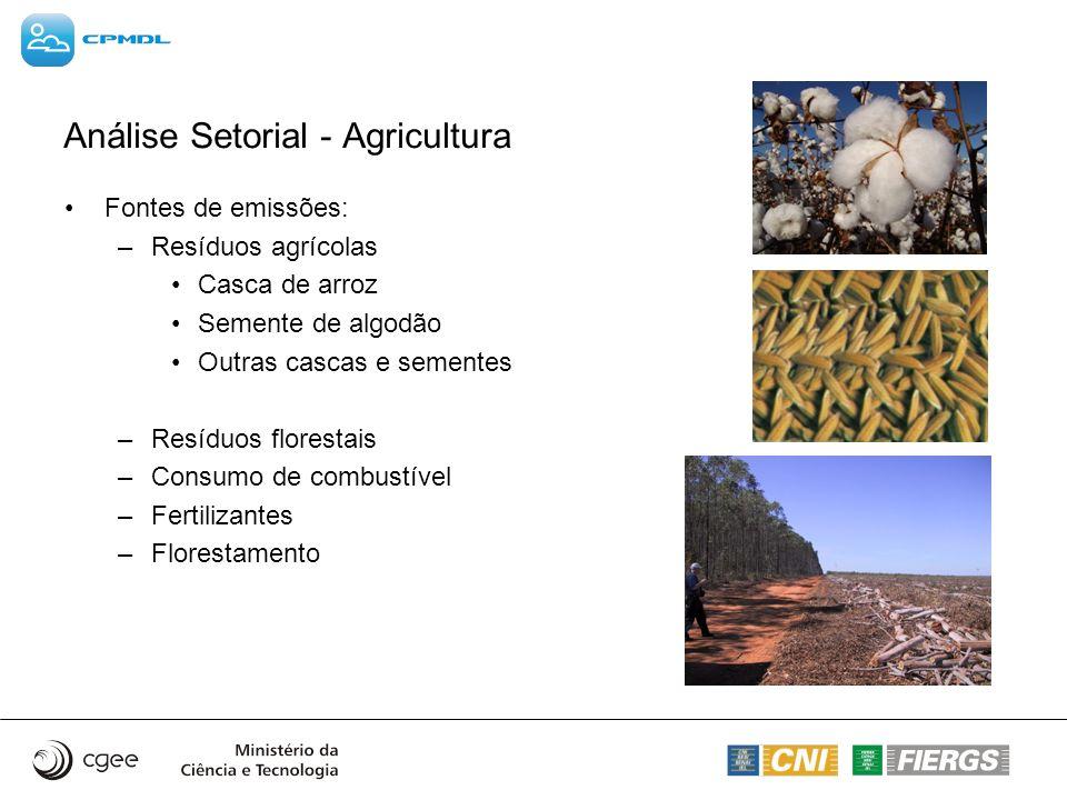 Análise Setorial - Agricultura