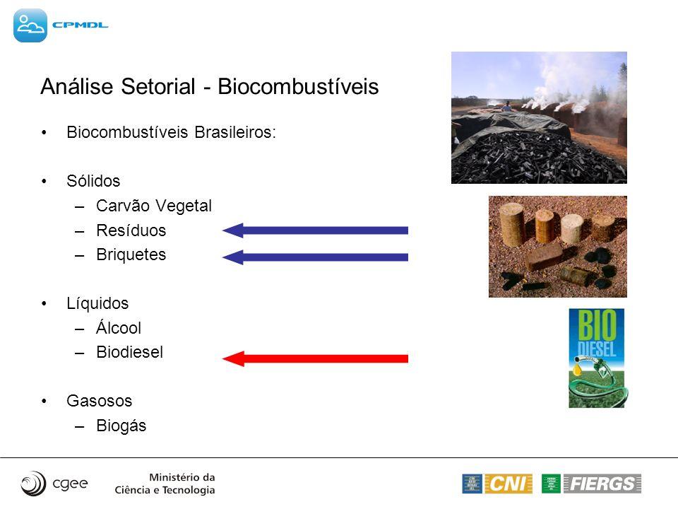 Análise Setorial - Biocombustíveis